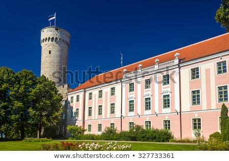 Parlamento edificio colina Tallinn característica Foto stock © smartin69