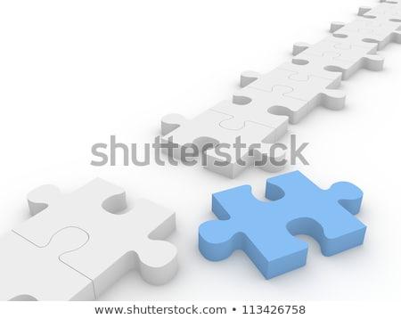 Opinione blu puzzle bianco ricerca concetto Foto d'archivio © tashatuvango