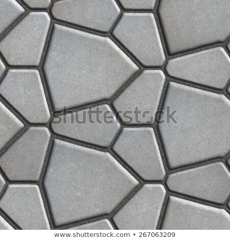 Brown Paving Slabs in the Form Polygons of Different Value. Stock photo © tashatuvango