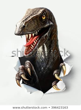 triceratops dinosaur claws tearing stock photo © krisdog