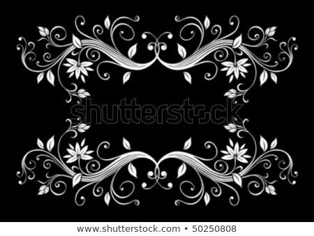 Zwart wit patroon illustratie vector formaat Stockfoto © orensila
