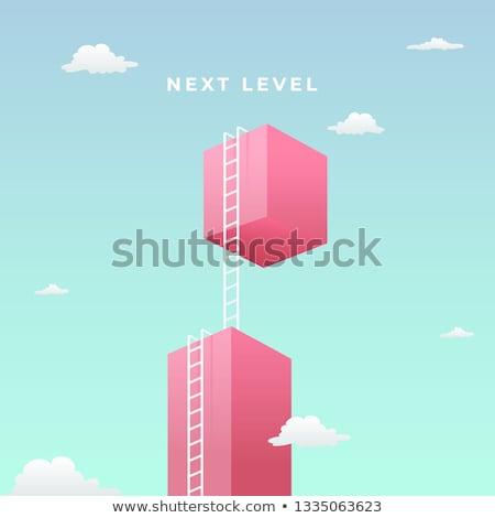 Next Level. Development Concept. Stock photo © tashatuvango