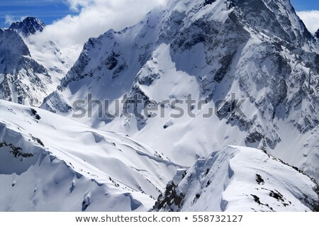 Snowboard in snow on off-piste slope at sun day Stock photo © BSANI