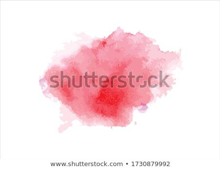 vektor · absztrakt · piros · vízfesték · terv · textúra - stock fotó © orson