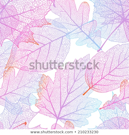 colorful autumn seamless leaves isolated eps 10 stock photo © beholdereye