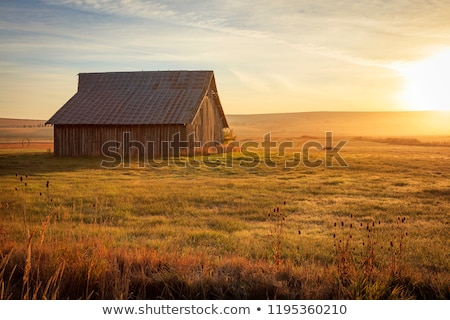 Old Barn Landscape Stock photo © Backyard-Photography