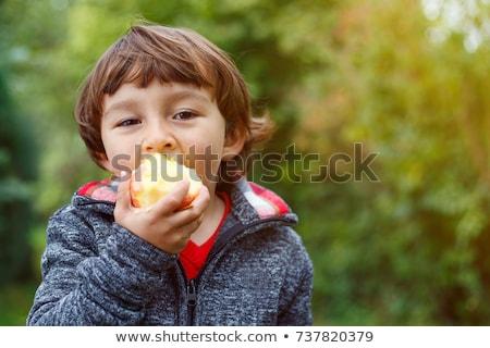 pequeño · bebé · nino · comer · manzana · aislado - foto stock © funix