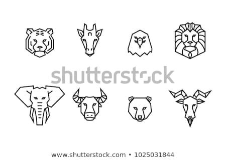 Goat head line icon. Stock photo © RAStudio