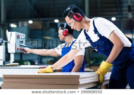 építőmunkás · vág · fa · férfi · kaukázusi · biztonsági · szemüveg - stock fotó © zurijeta