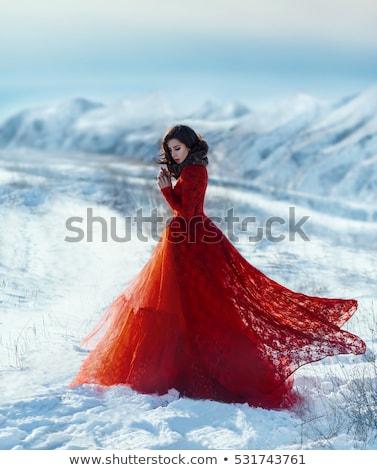 Foto stock: Bela · mulher · inverno · rainha · belo · mulher · jovem · coroa