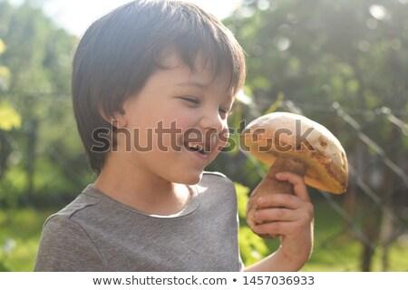 little white mushroom Stock photo © romvo