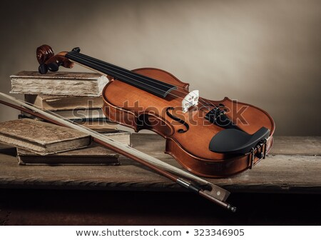 still life with old musical instruments stock photo © user_9834712