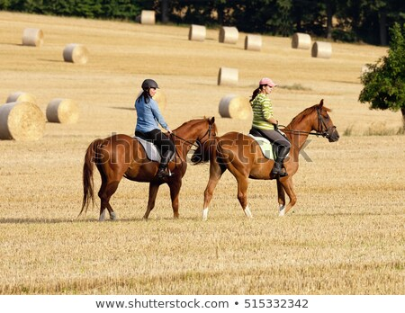 Two Women Horseback Riding in a Field with Bales of Hay Stock photo © courtyardpix