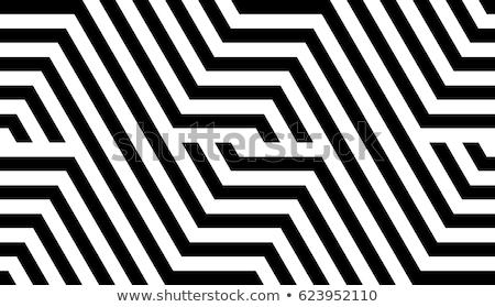 vector seamless black and white geometric stripes pattern stock photo © creatorsclub