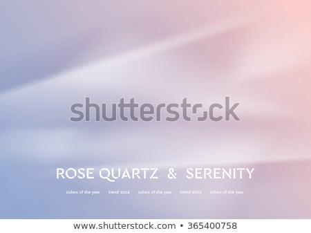 Roze kwarts sereniteit modieus kleuren Stockfoto © blackmoon979