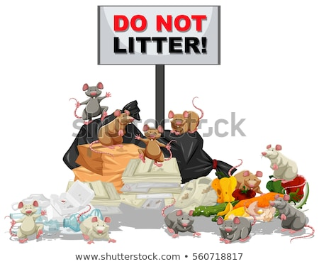 Rats searching for food at the litter pile Stock photo © bluering