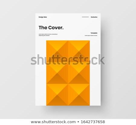 company brochure with minimal pattern Stock photo © SArts
