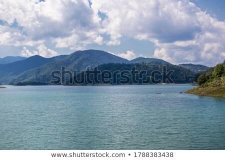 Mętny rano górskich Serbia lasu krajobraz Zdjęcia stock © goce