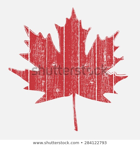 Vector Wooden Fence with Maple Leaves Stock photo © dashadima
