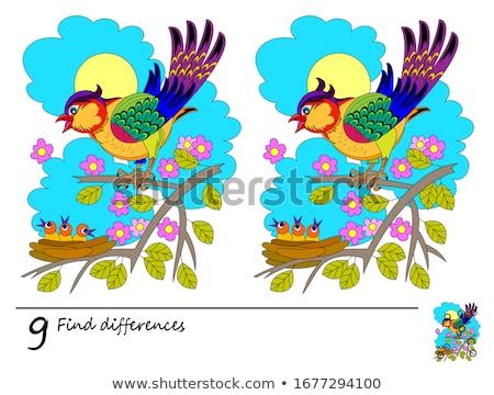 Foto stock: Encontrar · diferencias · juego · ninos · tarea · nina