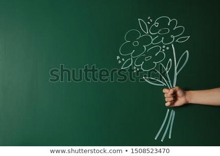 Werk studie groene schoolbord doodle Stockfoto © tashatuvango