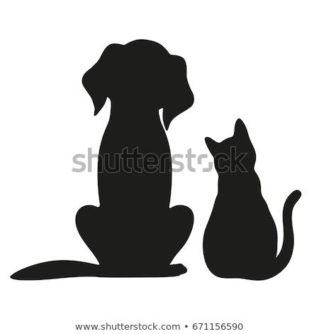 Cute · кошки · логотип · приют · вектора · эмблема - Сток-фото © olena