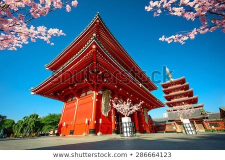 Pagoda gün batımı tapınak Tokyo Japonya ışık Stok fotoğraf © daboost