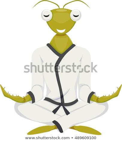 Kabala imádkozik sáska jóga illusztráció karate Stock fotó © lenm