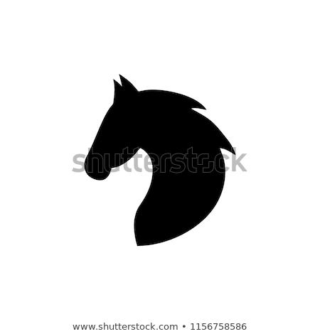 馬 頭 アイコン 抽象的な 自然 速度 ストックフォト © djdarkflower