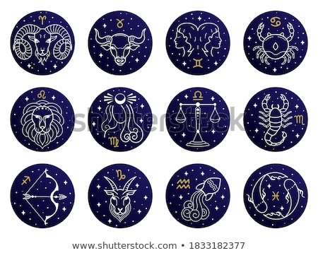 star signs zodiac horoscope astrology icon set stock photo © krisdog