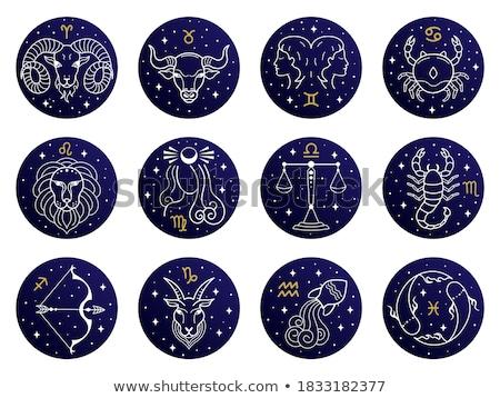 Stock fotó: Csillag · feliratok · állatöv · horoszkóp · asztrológia · ikon · gyűjtemény
