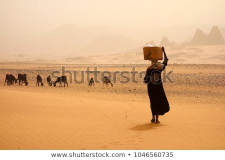Primitive women_travel Stock photo © toyotoyo