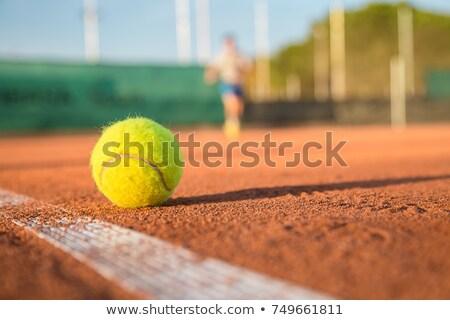 теннисный мяч землю иллюстрация небе фон искусства Сток-фото © bluering
