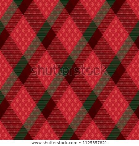 Decorative diagonal tartan inspired vector seamless pattern background 1 Stock photo © sanjanovakovic