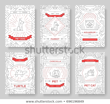 Animal vector brochure cards thin line set. Cute home pets template of flyear, posters, book cover,  stock photo © Linetale