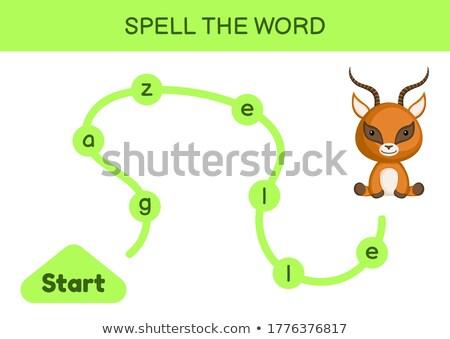 Spell English word gazelle Stock photo © bluering