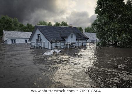Inondations catastrophe scène illustration nature paysage Photo stock © colematt