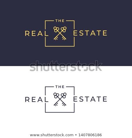ключевые · дома · линия · икона · веб · мобильных - Сток-фото © blaskorizov