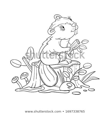 Kid Boy Book Animals Woodland Stock photo © lenm