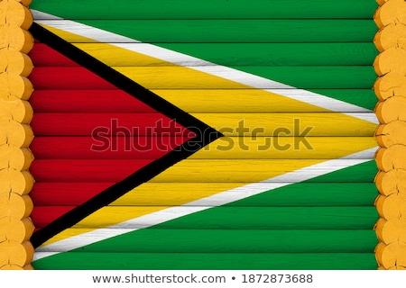 Ház zászló Guyana csetepaté fehér házak Stock fotó © MikhailMishchenko