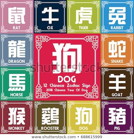Kínai új év disznó állatöv asztrológiai felirat vektor Stock fotó © robuart