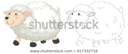 Animaux moutons illustration heureux nature Photo stock © colematt