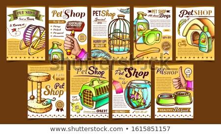 color vintage aquarium shop banner stock photo © netkov1