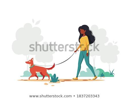 Correa vector mujer caminando perro ilustración Foto stock © pikepicture