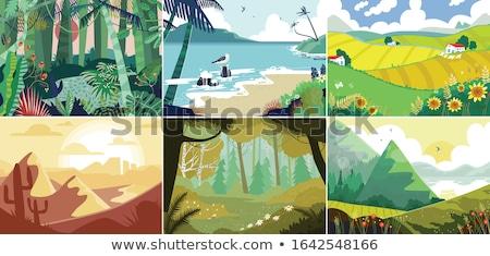 Escena árboles campo ilustración paisaje fondo Foto stock © colematt
