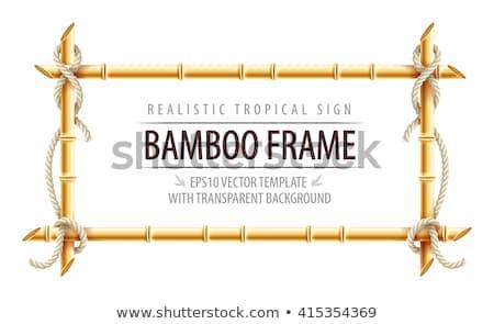 ベクトル 熱帯 黄色 竹 フレーム 孤立した ストックフォト © dashadima