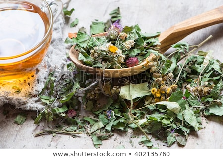 Cup of herbal tea Dry Herbs and flowers, herbal medicine. Stock photo © Illia