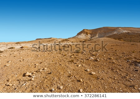 rocky ground of desert Stock photo © dolgachov