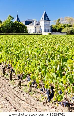 chateau tronquoy lalande saint estephe bordeaux region france stock photo © phbcz