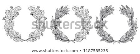 Negro de oliva corona aislado blanco gradiente Foto stock © adamson